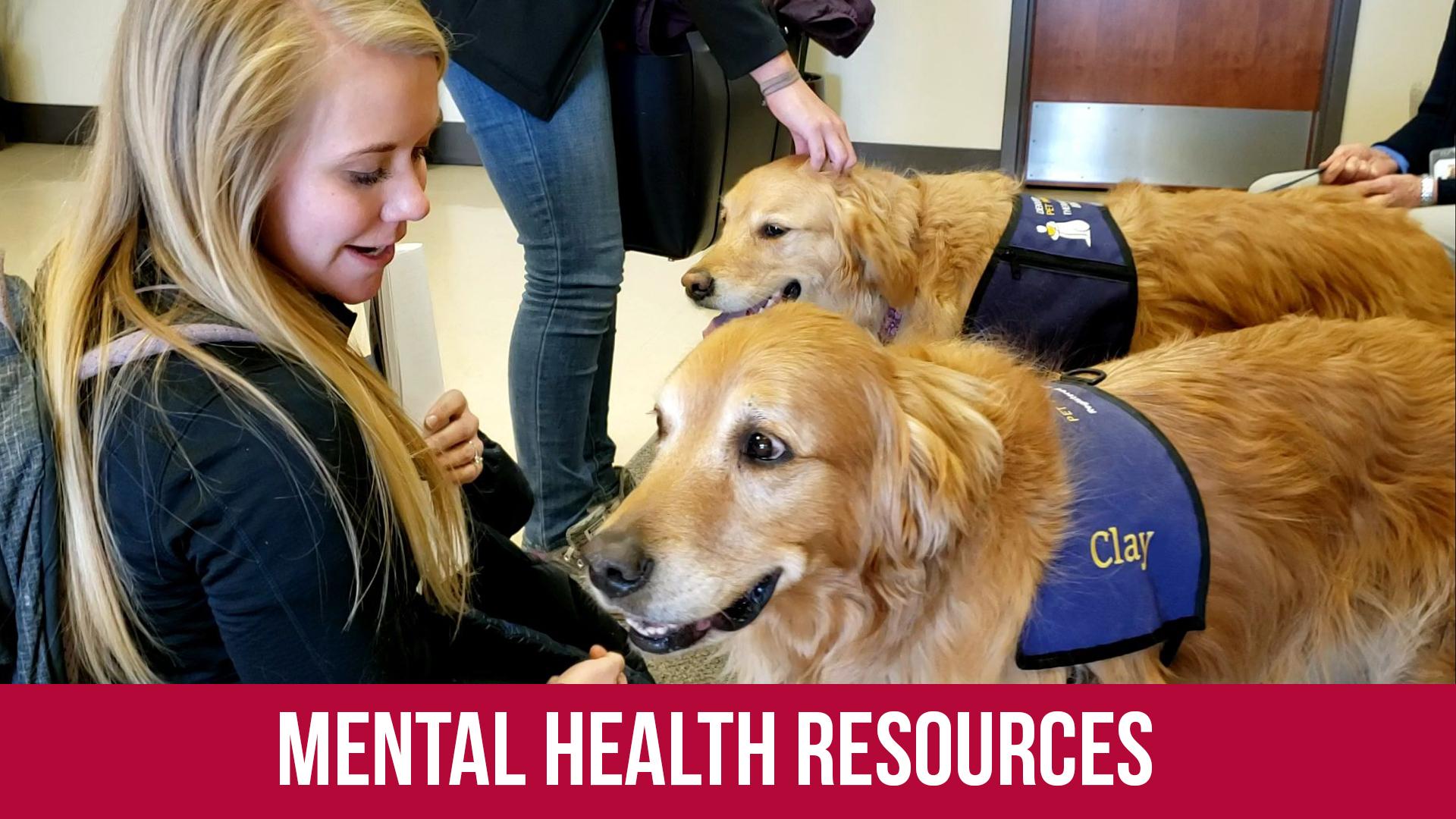 Box Mental Health Resources