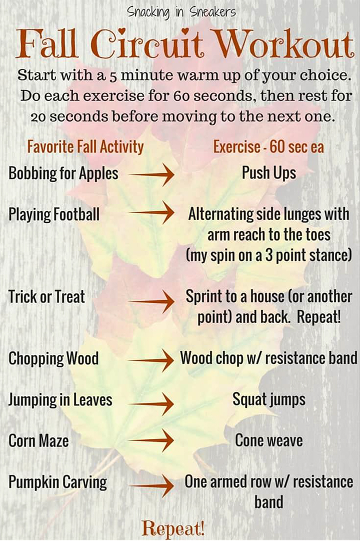 Fall Exercise Circuit