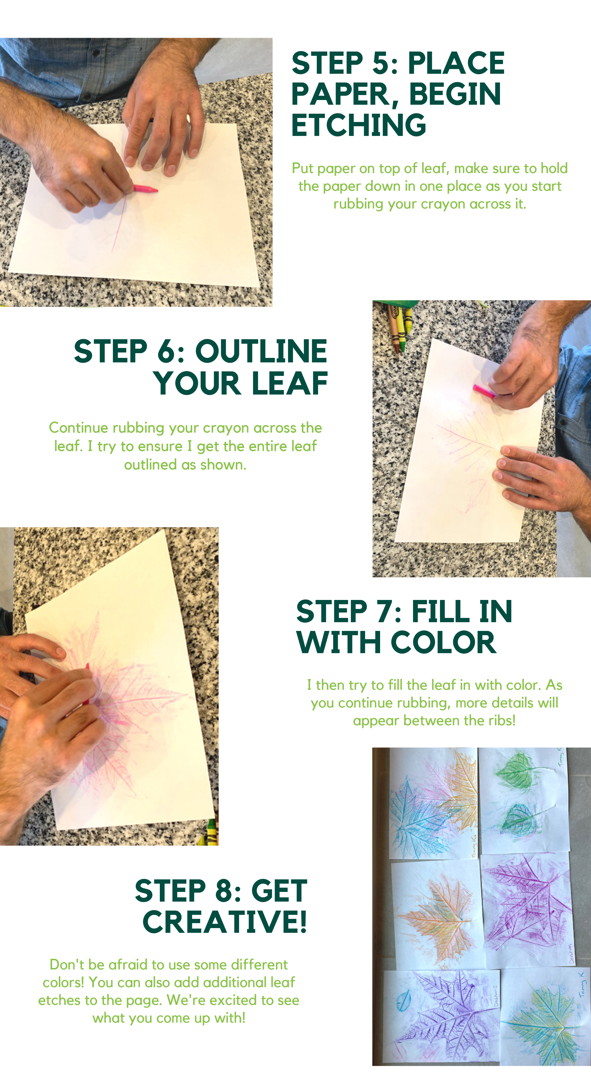 How to Make A leaf etching